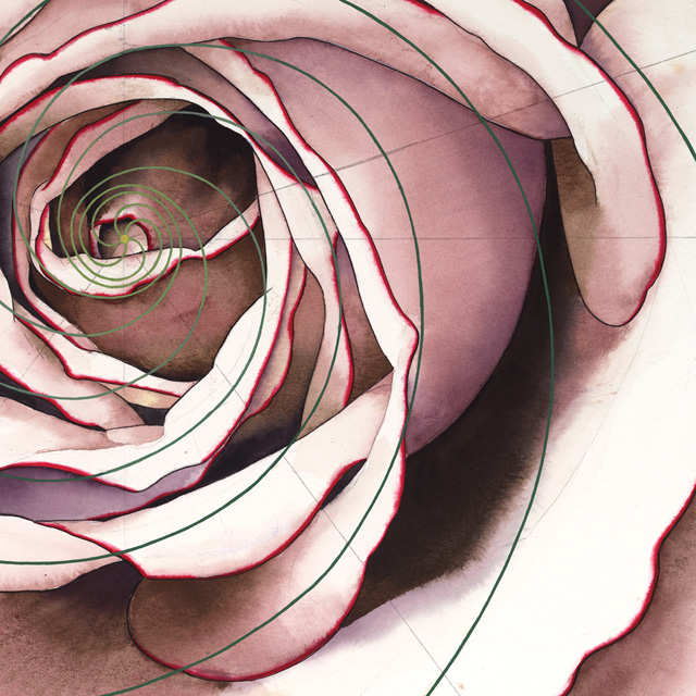 Unconditional Love Detail Print. (C) P.C.Turczyn