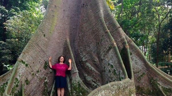 Elisa Novick in the Singapore Botanic Gardens under a Kapok tree.