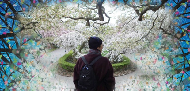 Pamela Turczyn stands before a cherry tree at Brooklyn Botanical Garden and sees more than meets the eye. Foto: Tony Oudaimy. Painting: P.C.Turczyn.